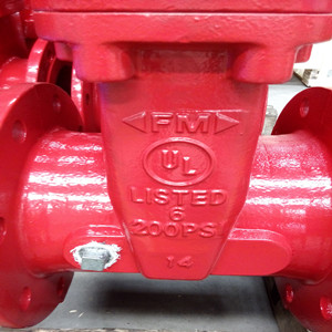 ANSI ASTM A536 Gate Valve, 200 PSI, 12 Inch, OS&Y
