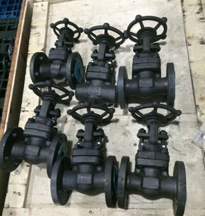 Flanged Bolted Bonnet Gate Valve, ASTM A105, OS&Y, 150#