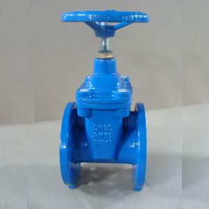 Resilient Seal Gate Valve, Ductile Iron GGG40
