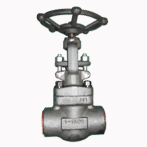 ASTM A105 Globe Valve, 1 Inch, Rating 1500, SW