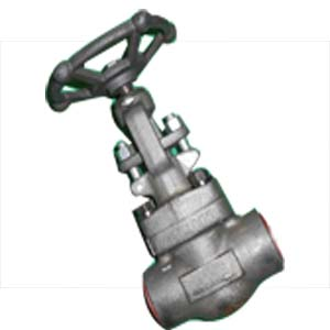 Forged Globe Valve, ASTM A182 F91, 1IN 1500LB SW